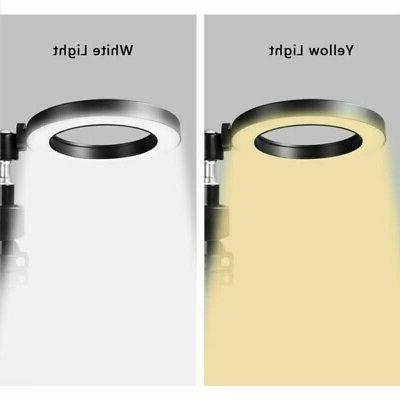 """8"""" 5500K Ring Light with Stand for Camera"""